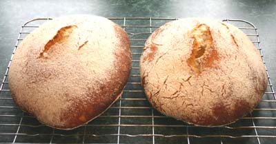 The loaves fresh from the oven